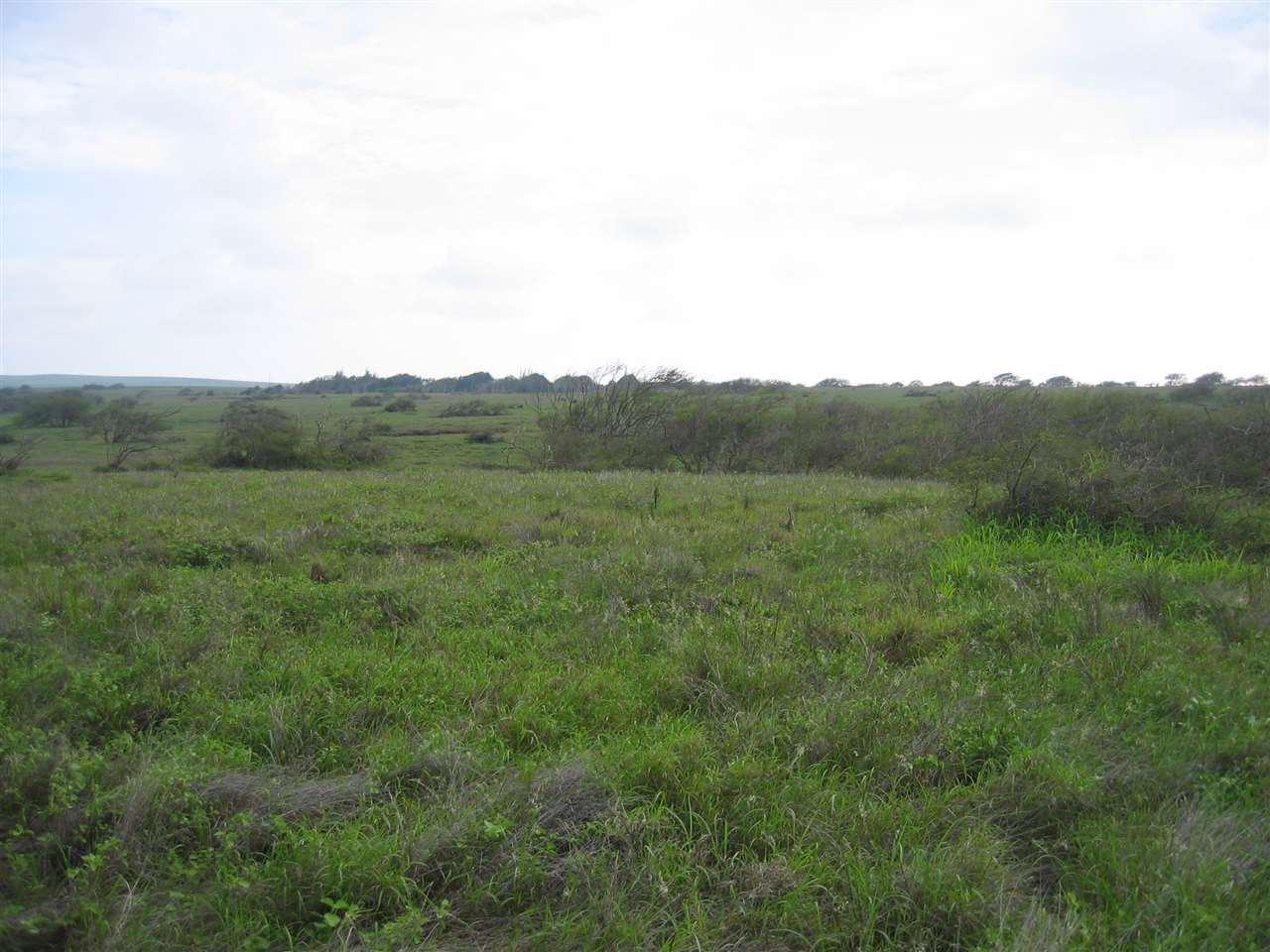 Photo of 0 Pa Loa Loop, Maunaloa, HI 96770 (MLS # 393226)
