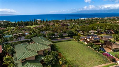Photo of 66 S Iwa Pl, Lahaina, HI 96761 (MLS # 386231)