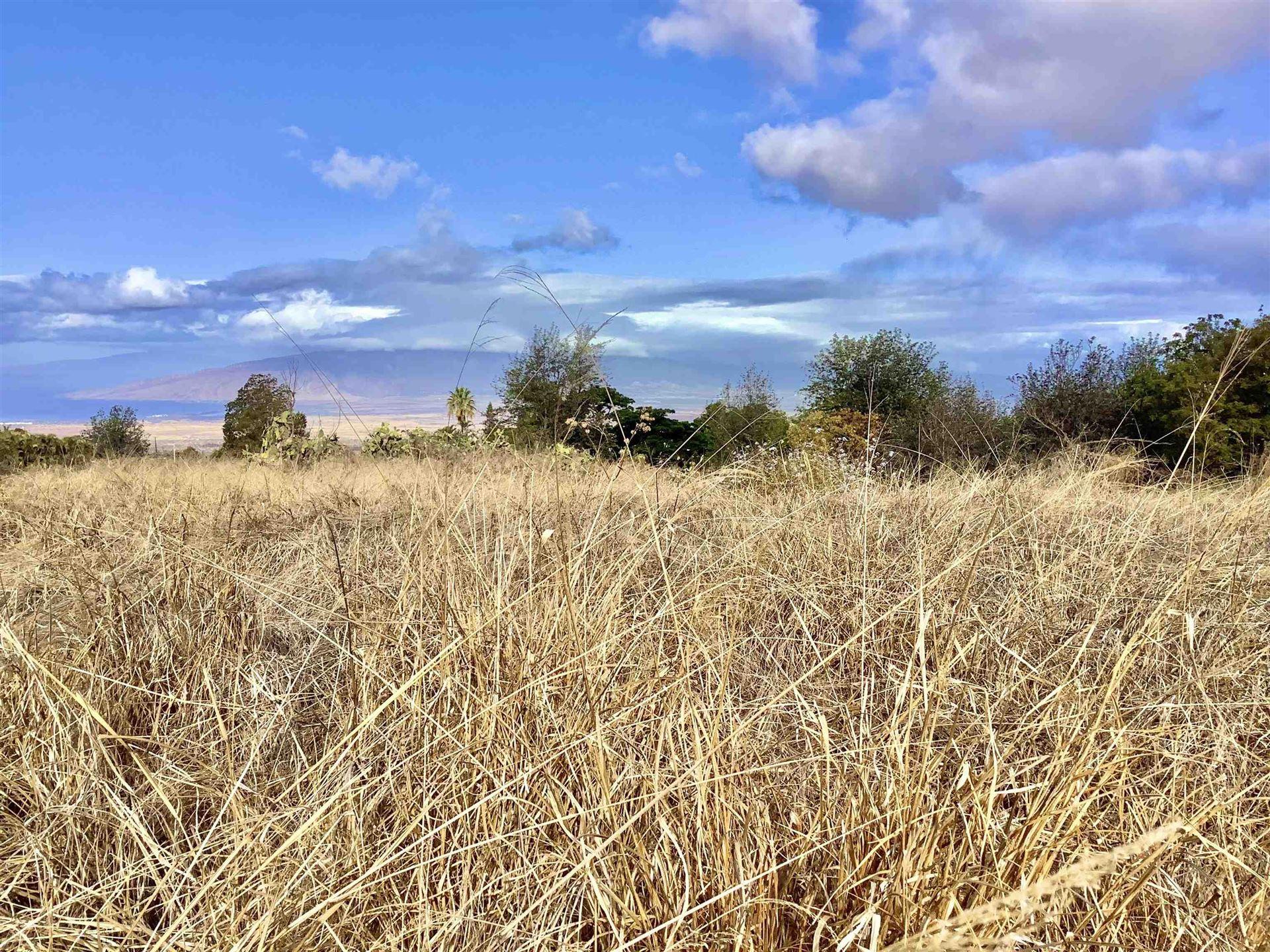 Photo of Holopuni Rd, Kula, HI 96790 (MLS # 393239)