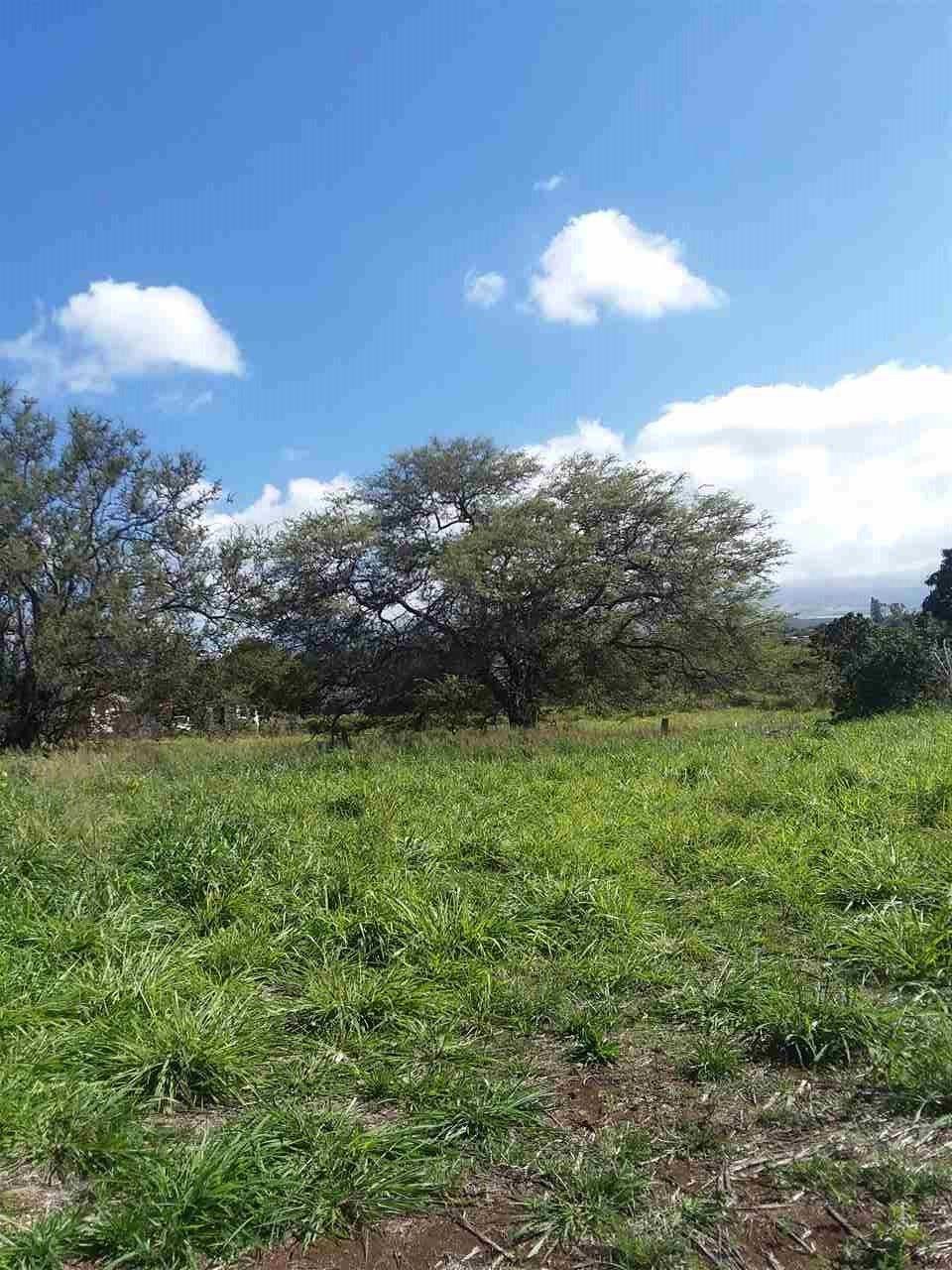 Photo of 89 MOHALA Pl, Pukalani, HI 96768 (MLS # 390244)