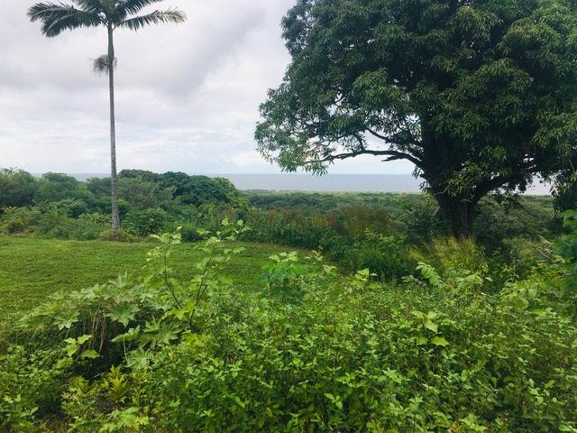 Photo of 2489 Hana Hwy, Hana, HI 96713 (MLS # 389289)