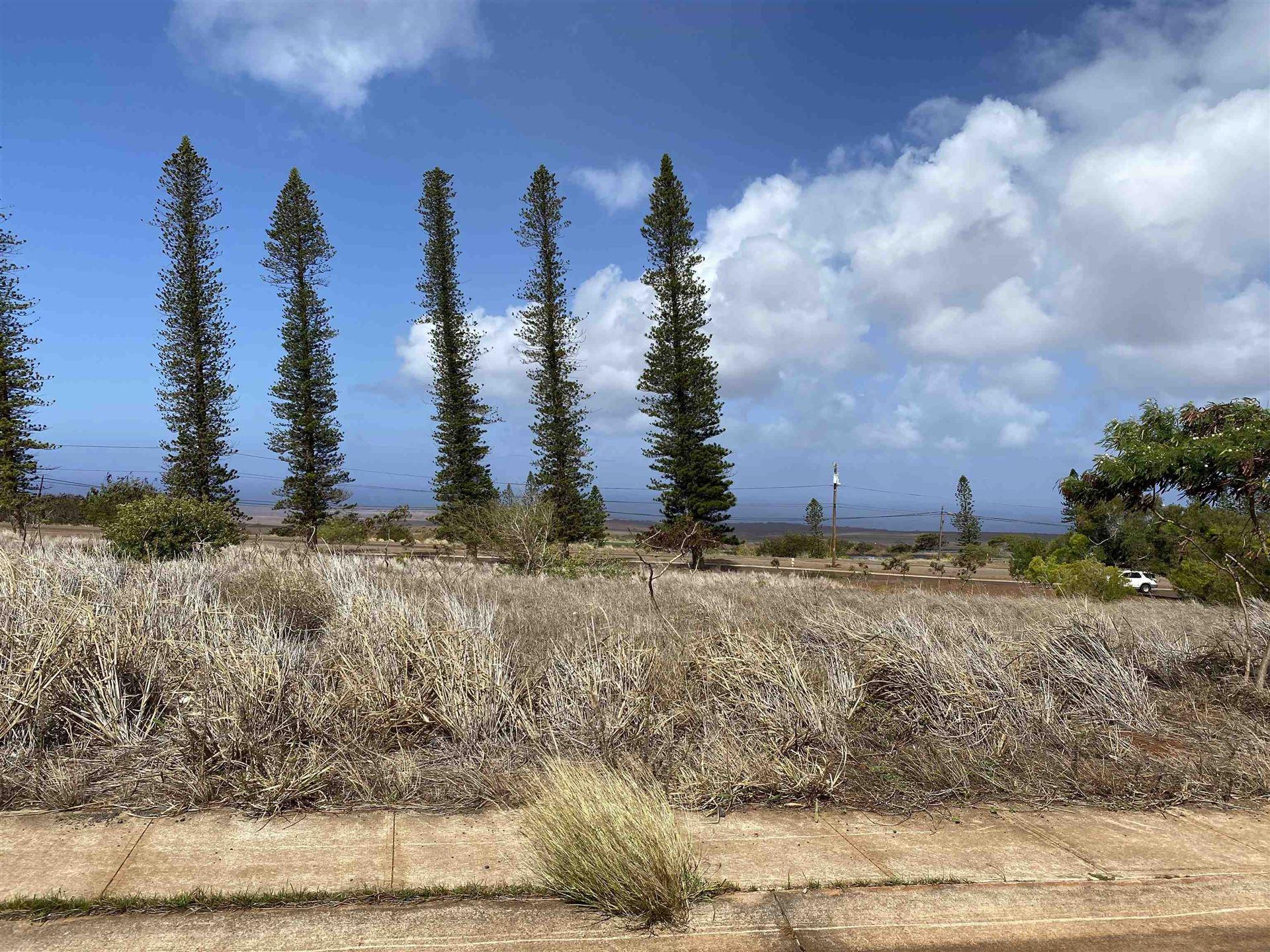 Photo of 0 Mahiki Pl, Maunaloa, HI 96770 (MLS # 393307)