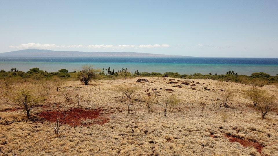 Photo of 0 Kamehameha Hwy, Kaunakakai, HI 96748 (MLS # 388326)