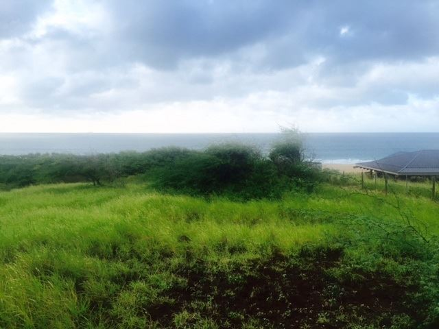 Photo of 0 Kalua Koi Rd #Builder Lot 238, Maunaloa, HI 96770 (MLS # 387328)