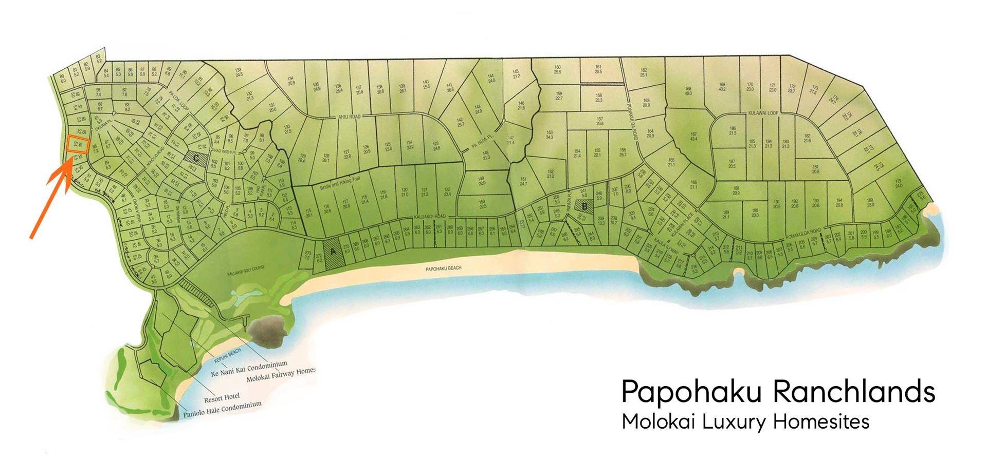 Photo of 188 Kaula Rd #Lot 54/181, Maunaloa, HI 96770 (MLS # 393334)
