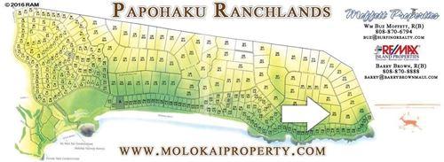 Tiny photo for 0 Pohakuloa Rd #Builder Lot 194, Maunaloa, HI 96770 (MLS # 388362)