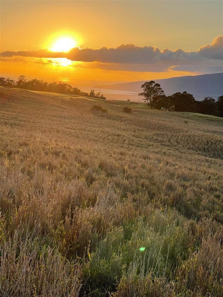 Photo of 0 Haleakala Hwy, Kula, HI 96790 (MLS # 390375)
