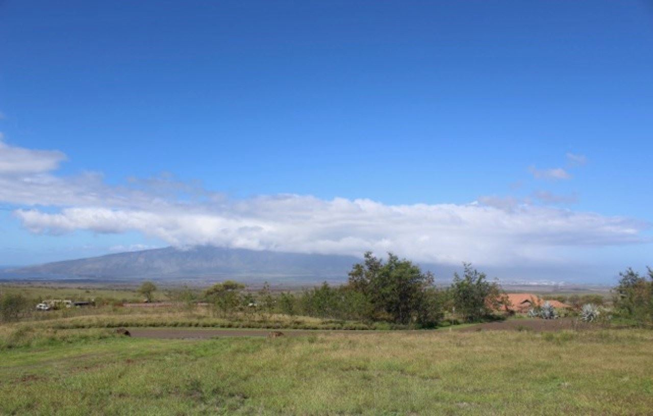 Photo of 22 Apali Way, Kula, HI 96790 (MLS # 385405)