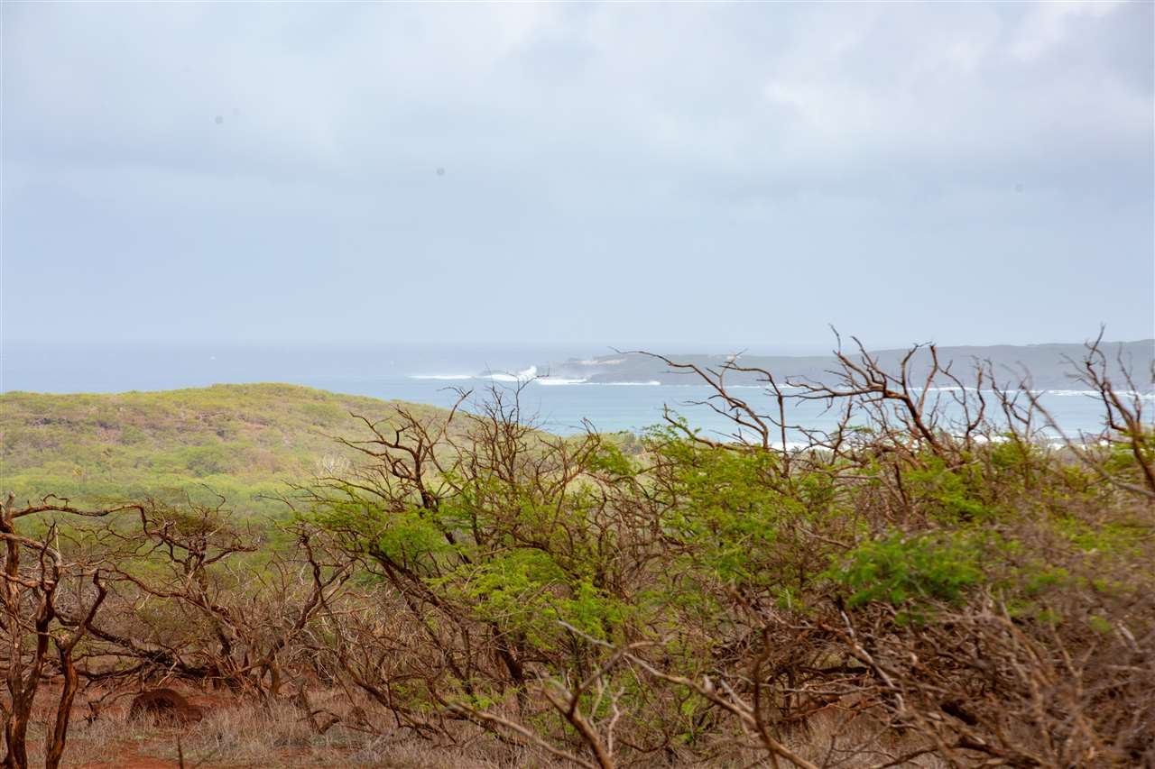 Photo of 0 Ahiu Rd, Maunaloa, HI 96770-0000 (MLS # 390411)