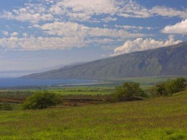 Photo of 30 Opalipali Pl, Kula, HI 96790-8354 (MLS # 387428)