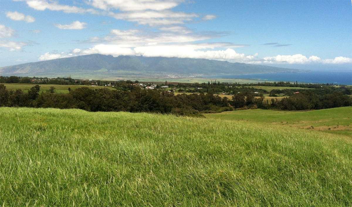 Photo of 325 Waiahiwi Rd, Makawao, HI 96768 (MLS # 386430)