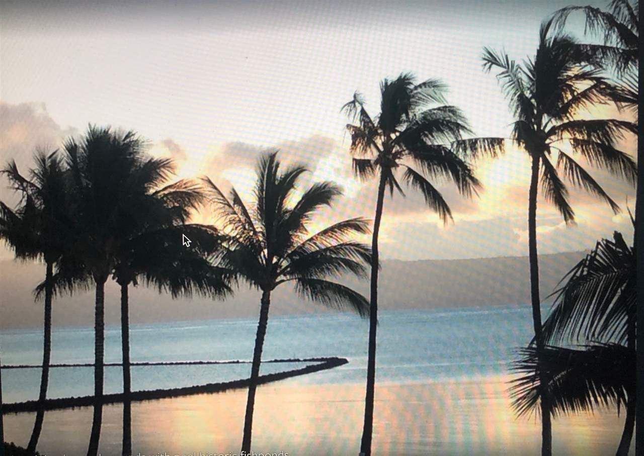 Photo of 1000 Kamehameha V Hwy #316A, Kaunakakai, HI 96748 (MLS # 388454)