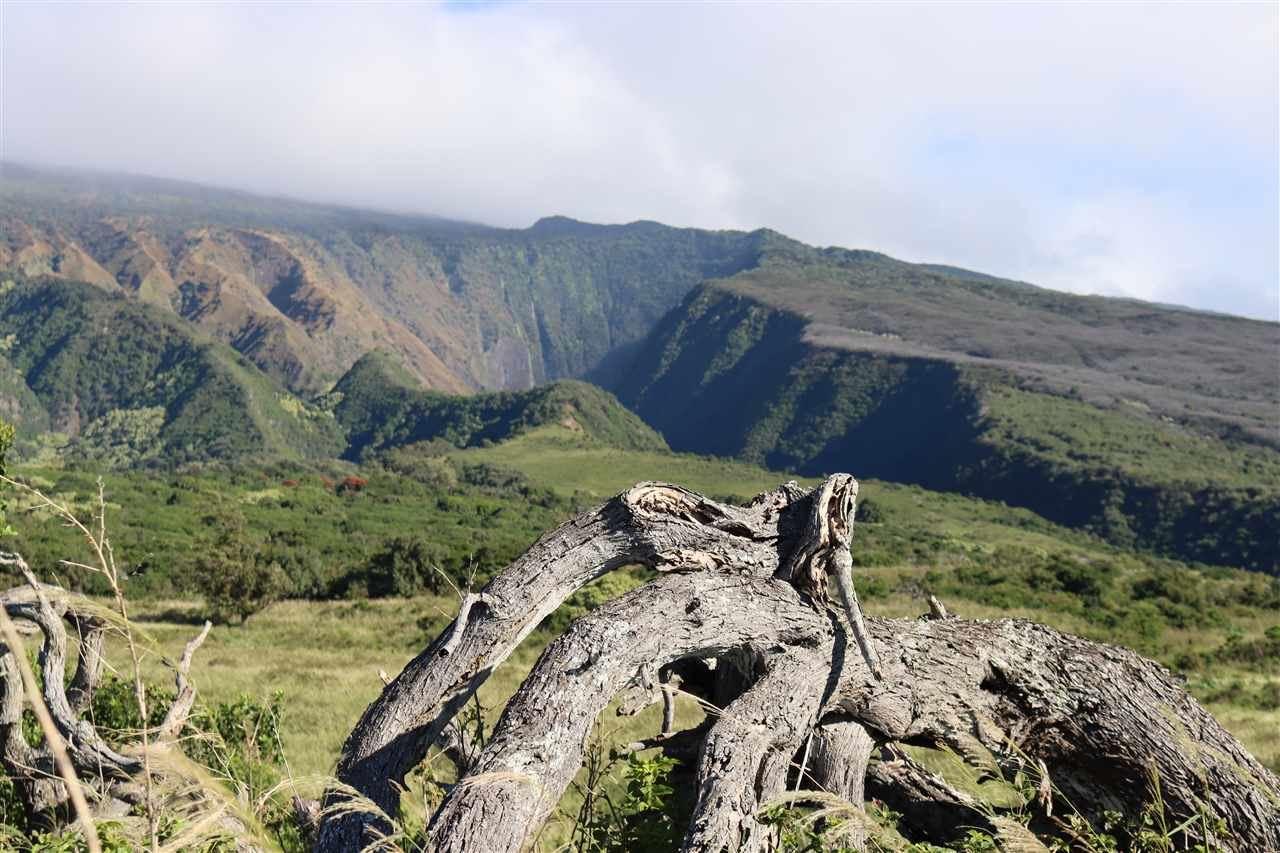 Photo of 0 Piilani Hwy, Hana, HI 96713 (MLS # 390460)