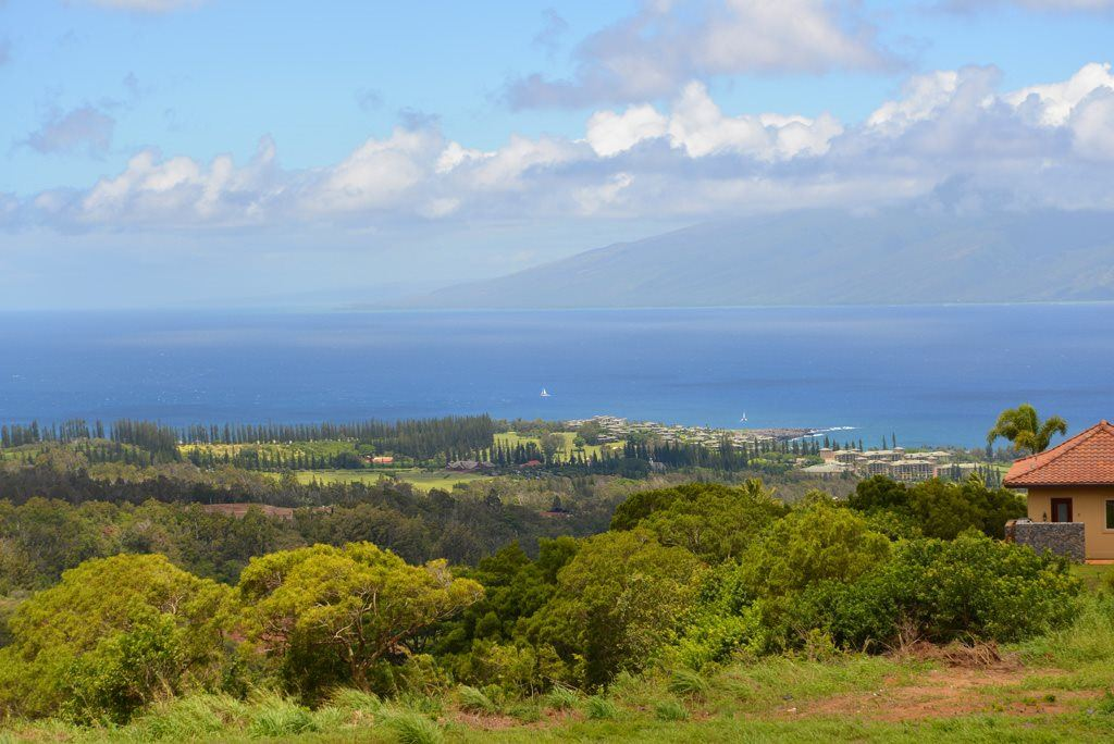 Photo of 208 Kalaunu Way #12, Lahaina, HI 96761 (MLS # 386461)