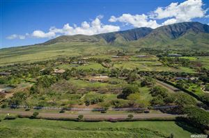 Photo of 325 HOKIOKIO PLACE, Lahaina, HI 96761 (MLS # 380463)