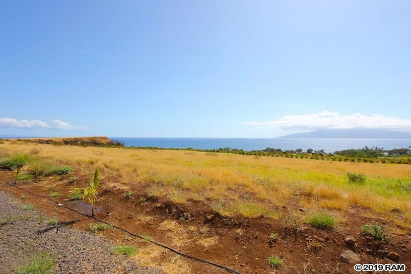 Photo of 206 Kai Hele Ku St #C, Lahaina, HI 96761 (MLS # 385465)