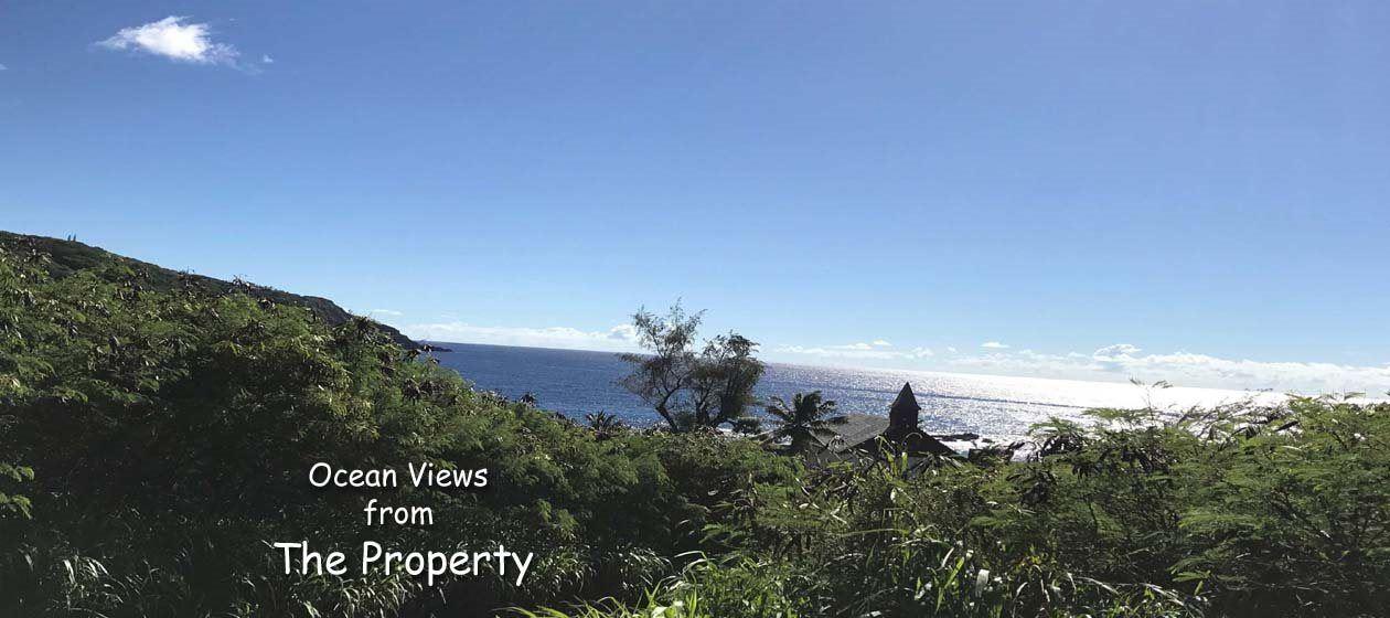 Photo of 35170 Piilani Hwy, Hana, HI 96713 (MLS # 390486)