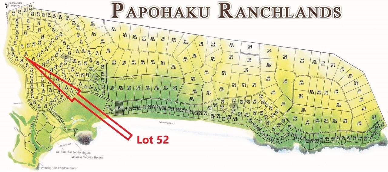 Photo of 230 Kaula Rd, Maunaloa, HI 96770-0000 (MLS # 391496)