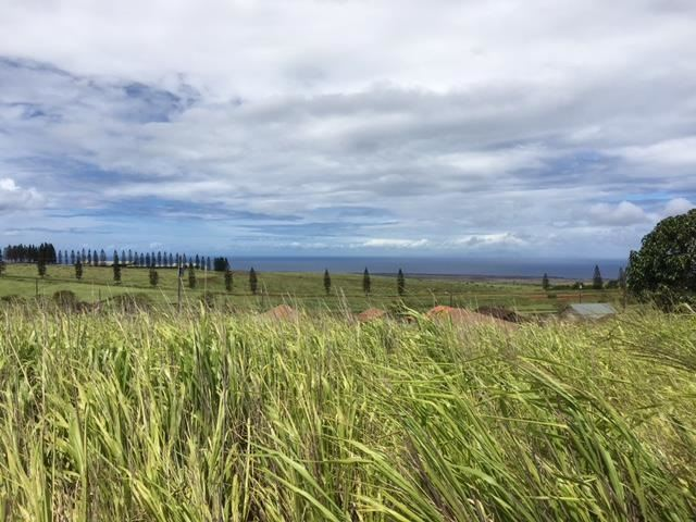 Photo of Linohau Pl, Maunaloa, HI 96770 (MLS # 392562)