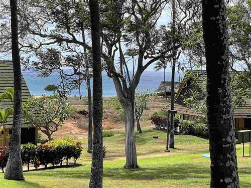 Photo of 0 KEPUHI Pl #1216/13B06, Maunaloa, HI 96770 (MLS # 391566)