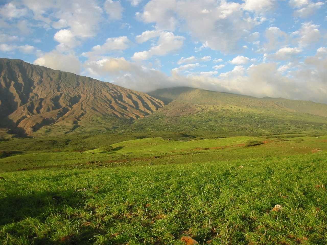 Photo of 33071 Piilani Hwy, Hana, HI 96790 (MLS # 390569)
