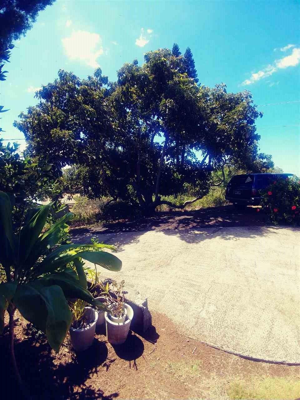 Photo of 20 Keola Pl, Makawao, HI 96768-9326 (MLS # 388572)
