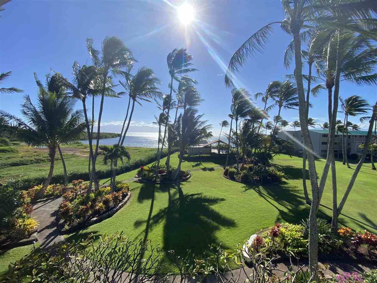 Photo of 7146 Kamehameha V Hwy #C308, Kaunakakai, HI 96748 (MLS # 389581)