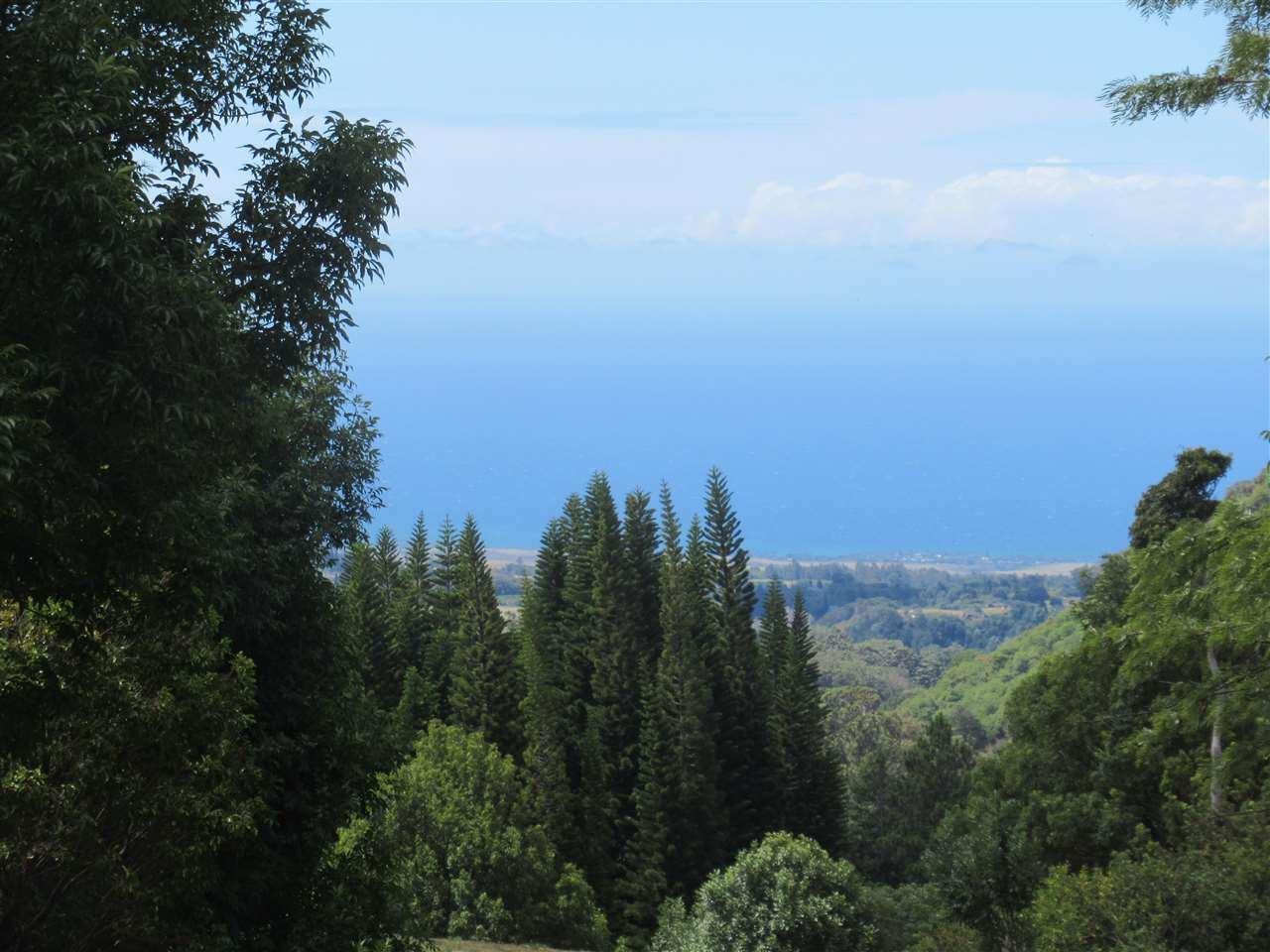 Photo of 0 Kahakapao Rd #133-A, Makawao, HI 96768 (MLS # 388586)