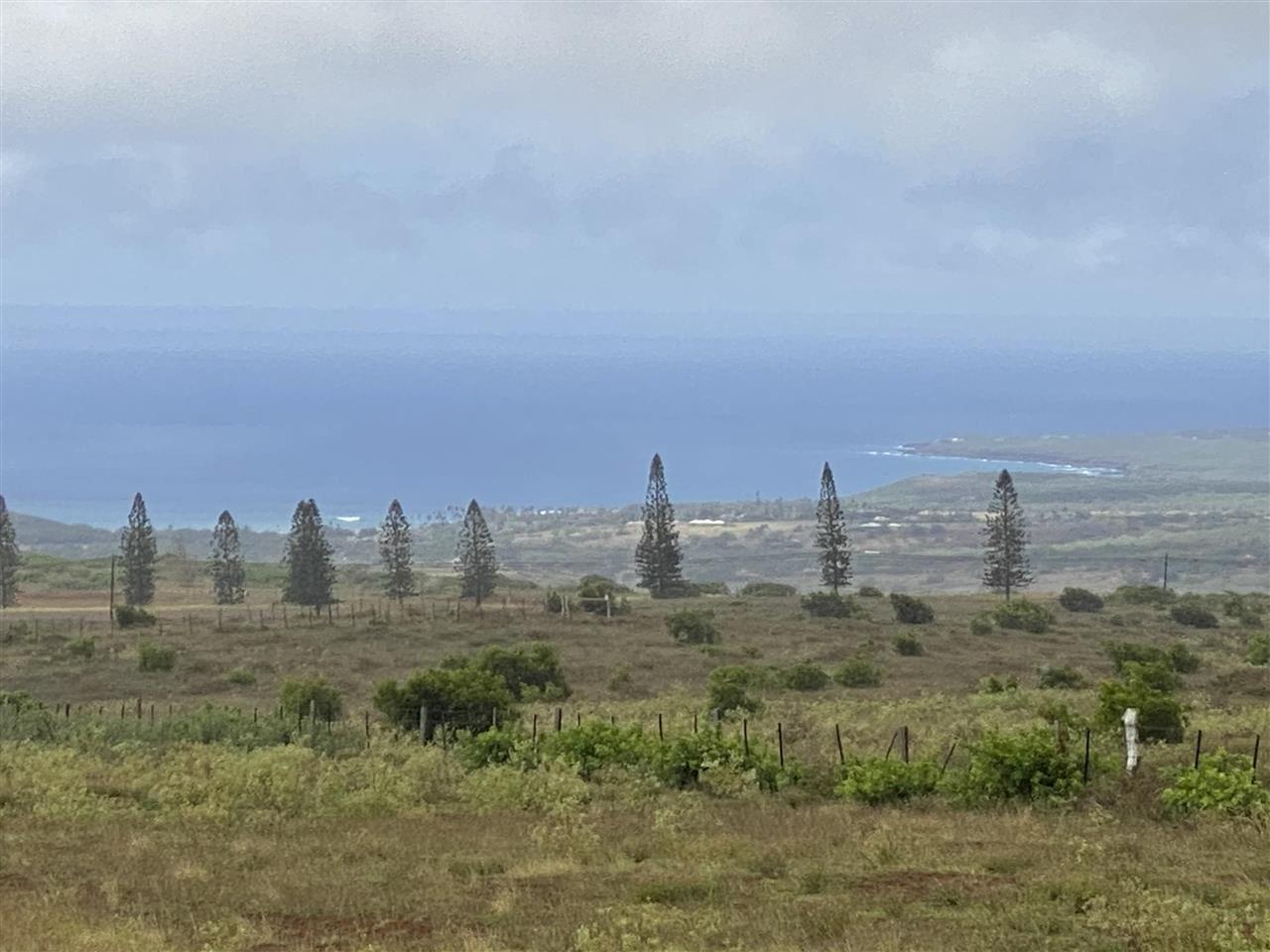 Photo of 95 Puunana St, Maunaloa, HI 96770 (MLS # 390591)