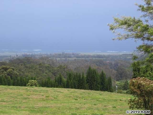 Photo of 0 Kahakapao RD, Makawao, HI 96768 (MLS # 383594)