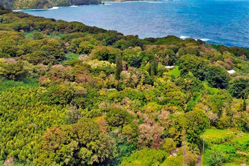 Photo of Nahiku Rd #Z, Hana, HI 96713 (MLS # 386596)
