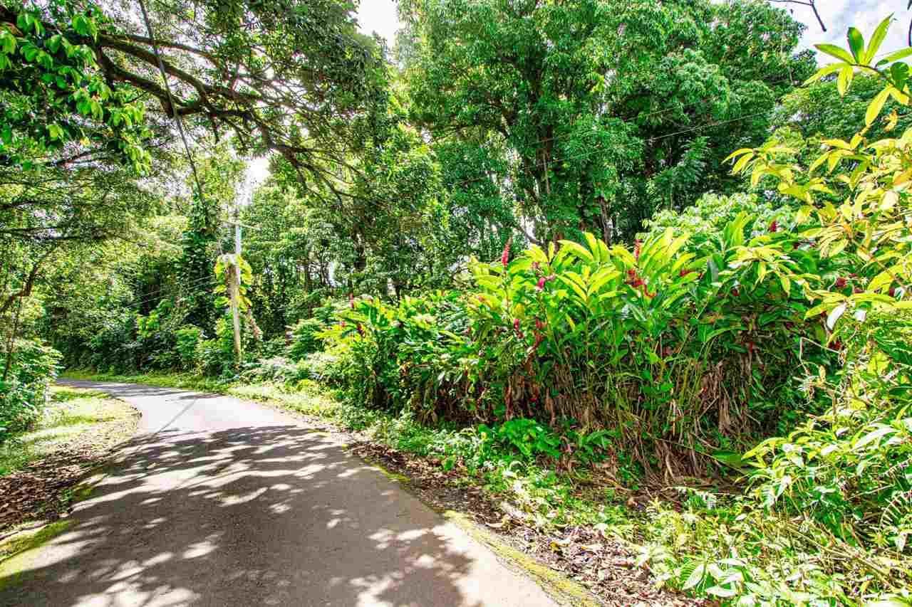 Photo of Nahiku Rd #Z, Hana, HI 96713 (MLS # 386596)
