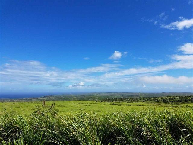 Photo of 0 Kaana St #D-87, Maunaloa, HI 96770 (MLS # 389597)