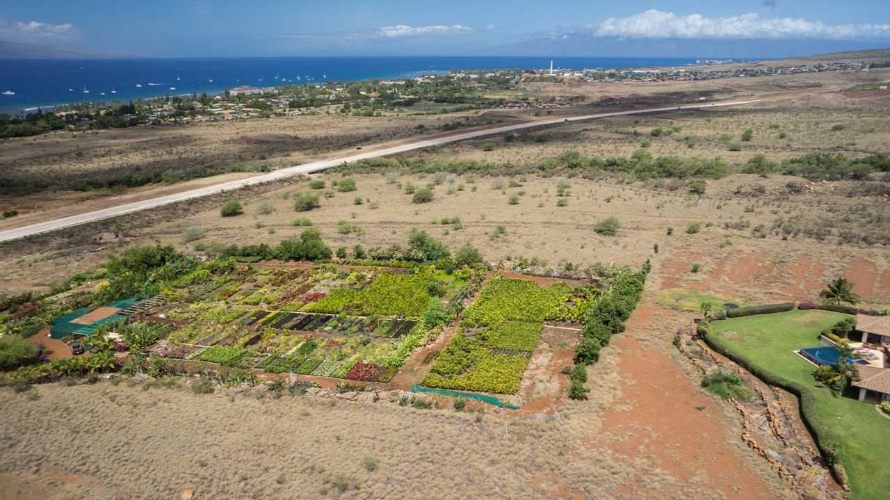 Photo of Lot 13B Mele Komo Pl #lot 13 B, Lahaina, HI 96761 (MLS # 386598)