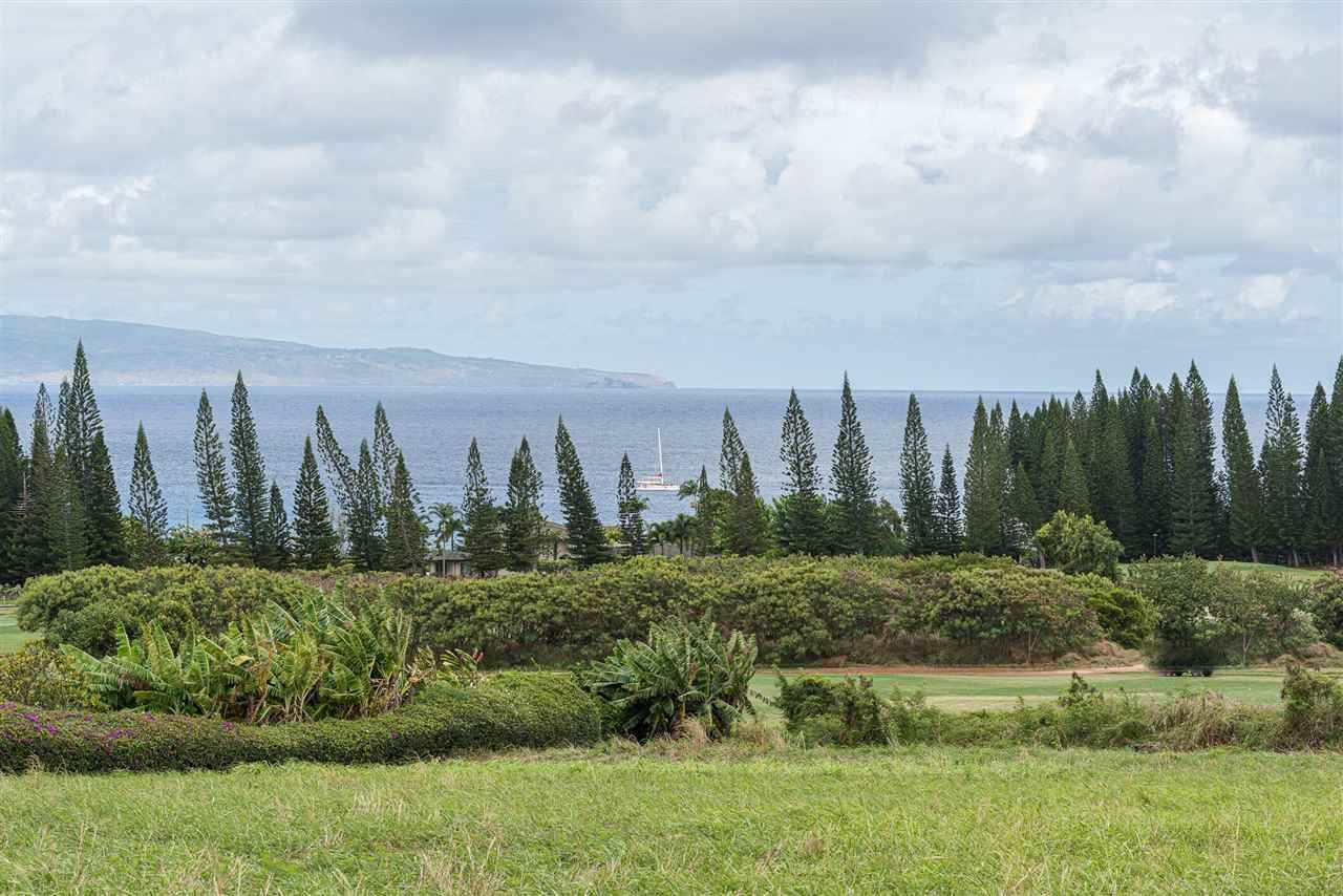 Photo of 303 Plantation Estates Dr #33, Lahaina, HI 96761 (MLS # 387650)