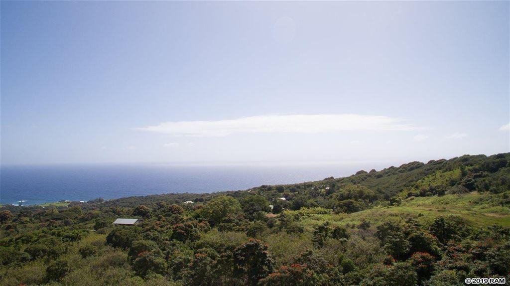 Photo of 110 Waiho'i Rd, Hana, HI 96713 (MLS # 381701)