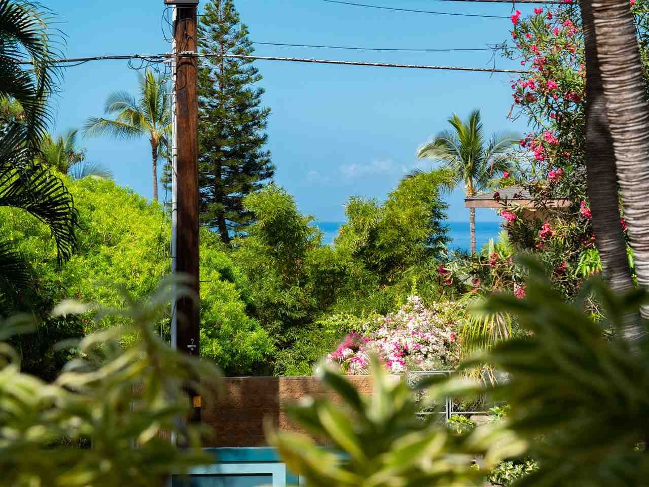 Photo of 3129 Mapu Pl, Kihei, HI 96753-9424 (MLS # 390710)