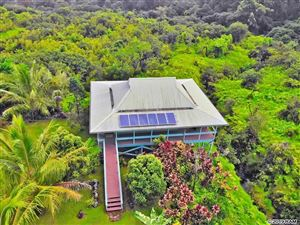 Photo of 900 Hana Hwy, Hana, HI 96713 (MLS # 384736)