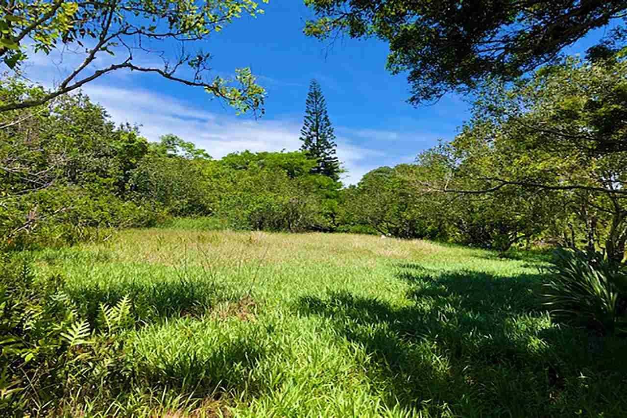 Photo of 120 Hoolawa Rd, Haiku, HI 96708 (MLS # 387745)