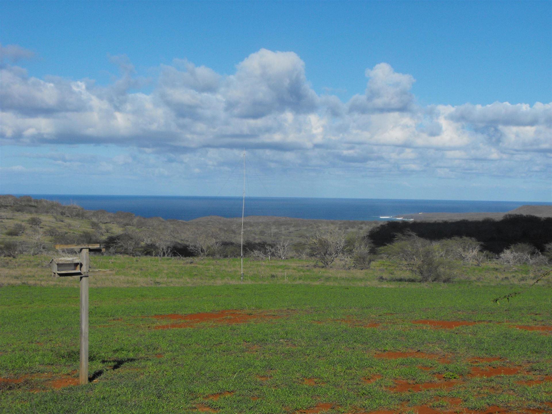 Photo of 1560 Kalua Koi Rd, Maunaloa, HI 96770 (MLS # 392745)
