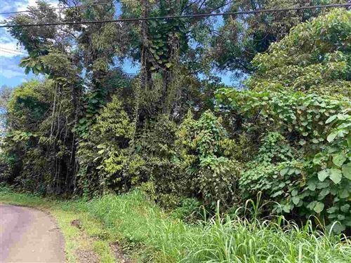Photo of 670 Nahiku Rd, Hana, HI 96713 (MLS # 390752)