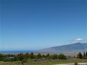 Photo of 178 Lei'ohu Cir, Pukalani, HI 96768 (MLS # 382772)