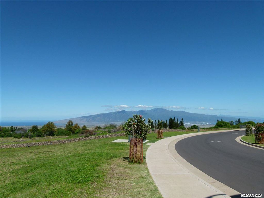 Photo of 178 Leiohu Cir, Pukalani, HI 96768 (MLS # 382772)