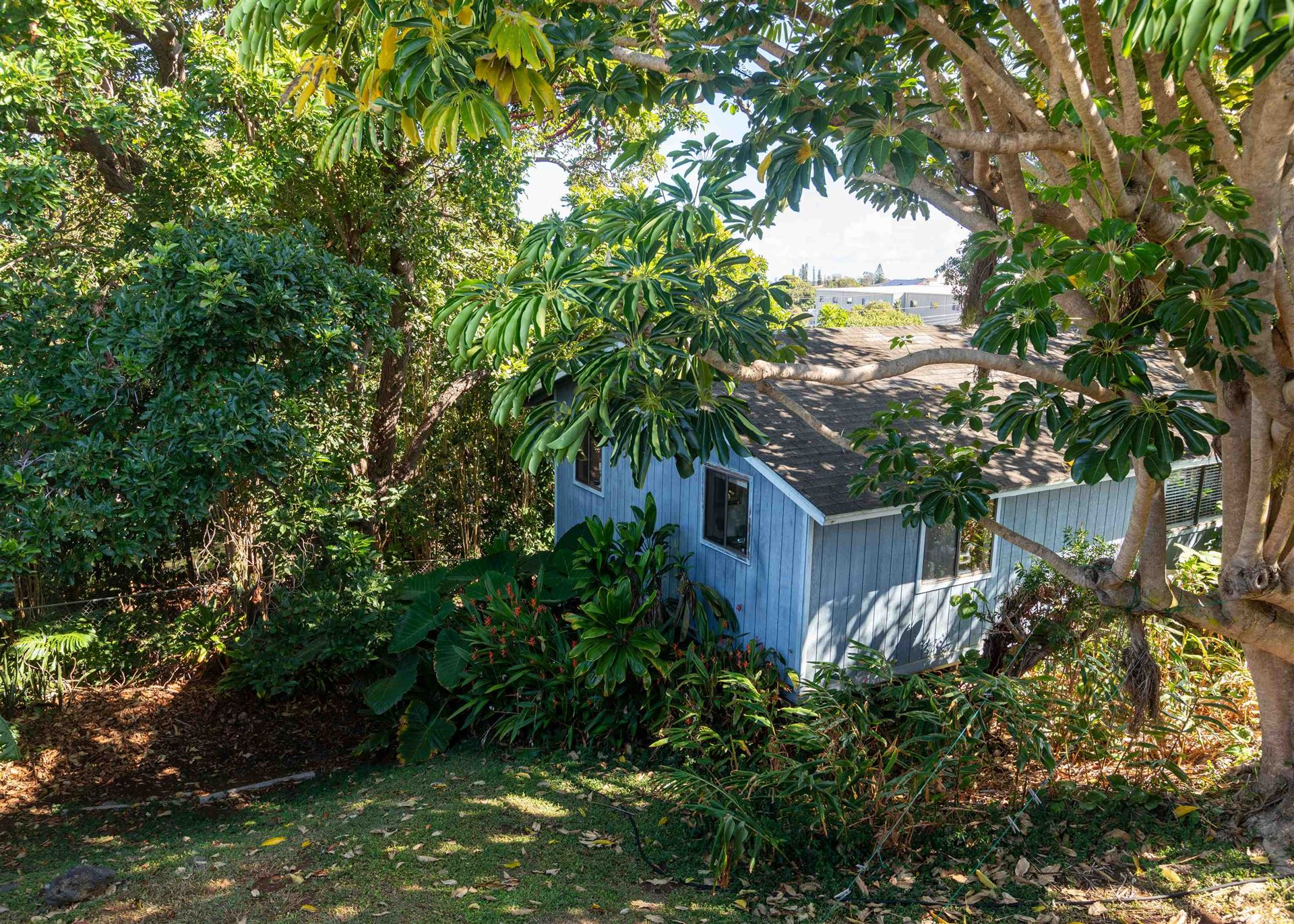 Photo of 1001 Ulele St, Makawao, HI 96768 (MLS # 392778)