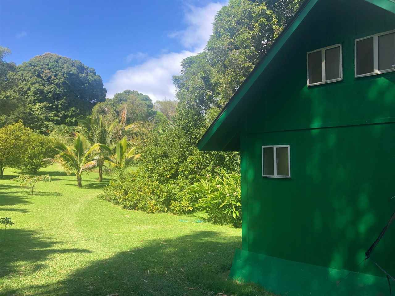 Photo of 344 Nahiku Rd, Hana, HI 96713 (MLS # 386794)