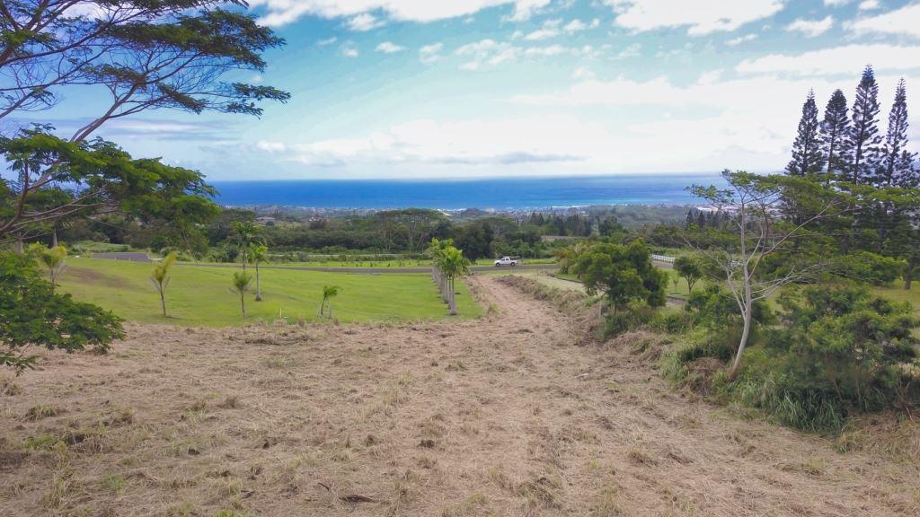 Photo of 431 Maukele Pl, Wailuku, HI 96793 (MLS # 386796)
