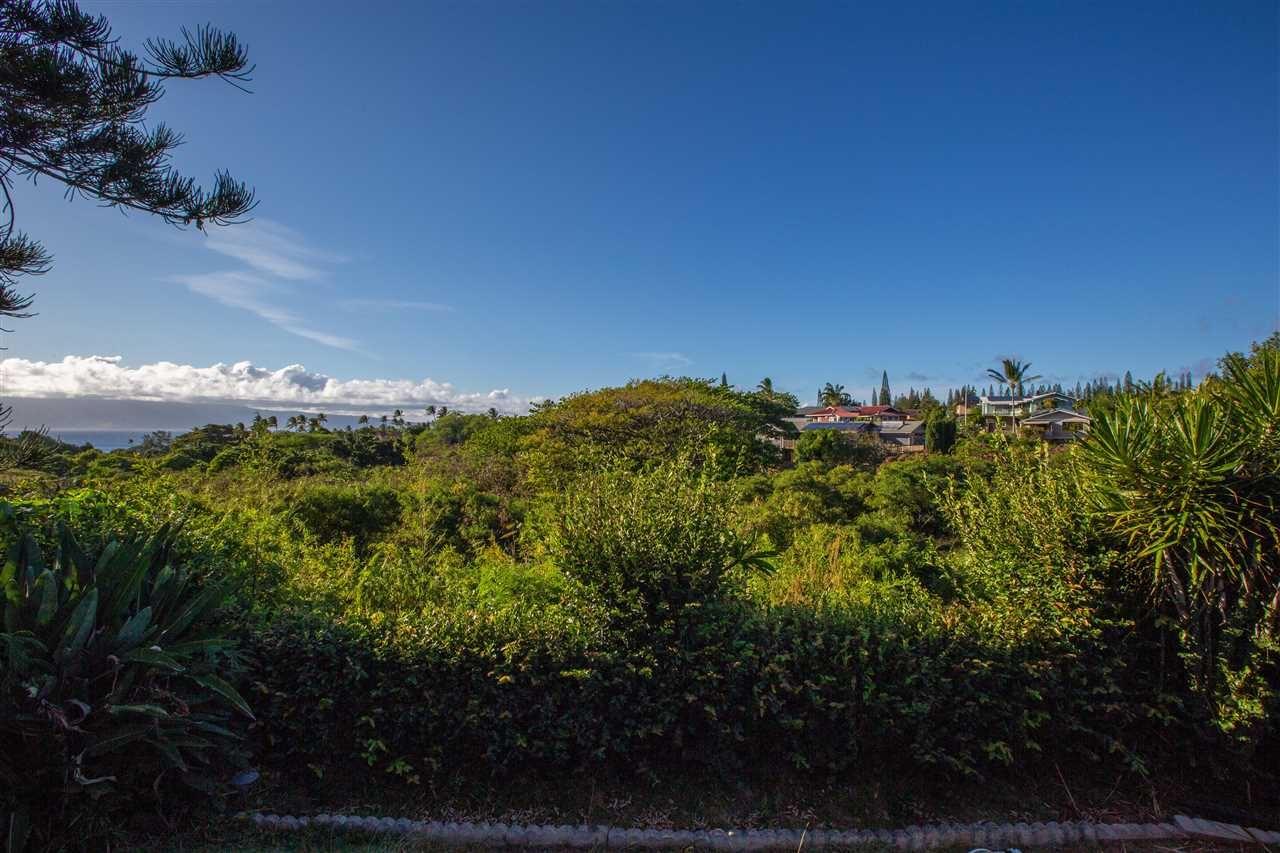 Photo of 5221-D Kohi St, Lahaina, HI 96761 (MLS # 391797)