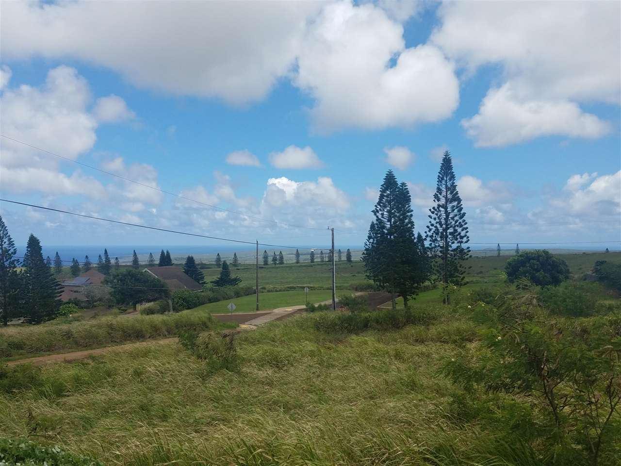 Photo of Halena St #D-54, Maunaloa, HI 96770-0000 (MLS # 391823)
