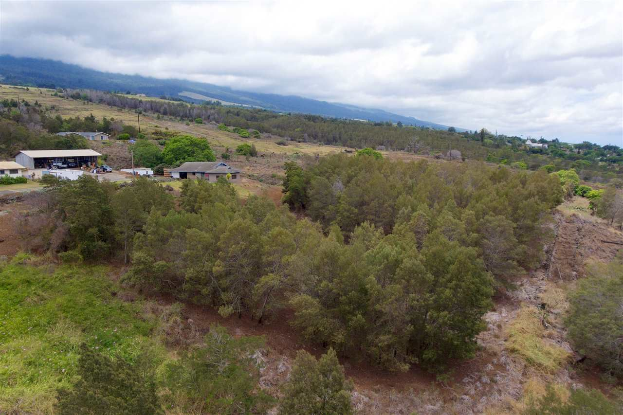 Photo of 0 Kamehameiki Rd #Lot C-1, Kula, HI 96790 (MLS # 387923)