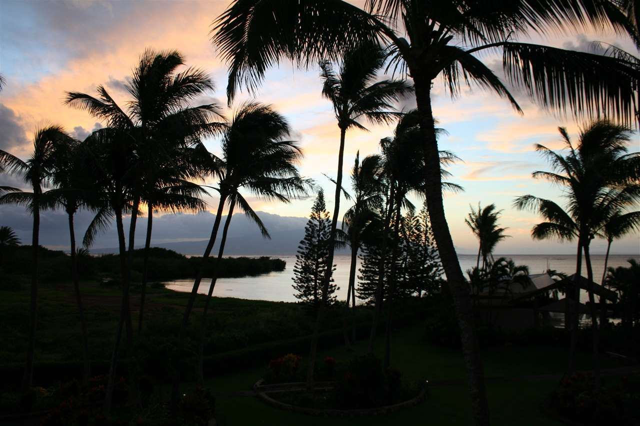 Photo of 7146 Kamehameha V Hwy #C309, Kaunakakai, HI 96748 (MLS # 388935)